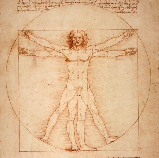 Az ember - Da Vinci rajza.