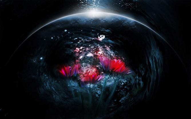 A világmindenség; virágok.