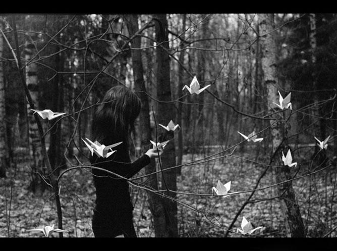 Lány papírmadarakkal egy kopár erdőben.