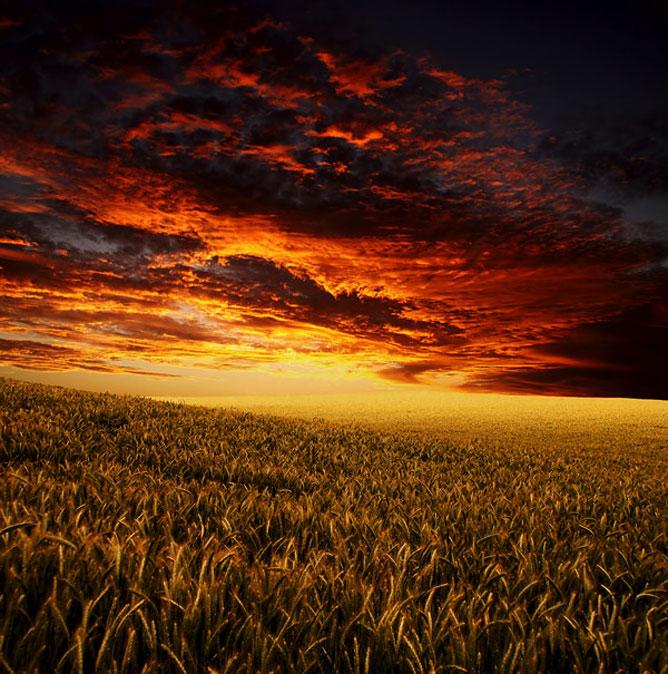 Beautiful landscape.
