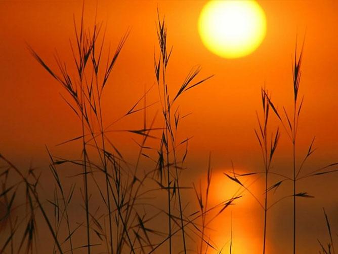 Narancsos naplemente.