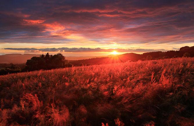 Vörös naplemente.