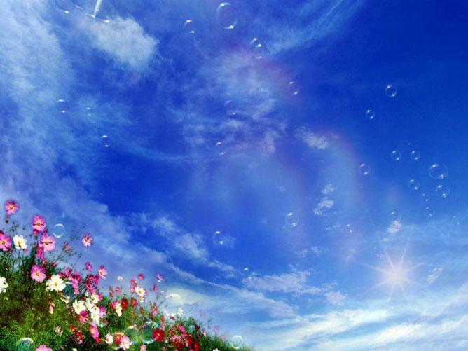 Virágok és szikrázó kék ég.