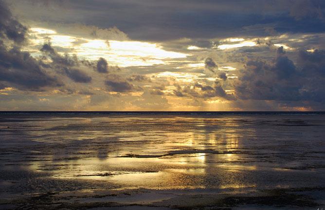 Gold sea.
