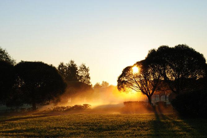 Arany hajnal.