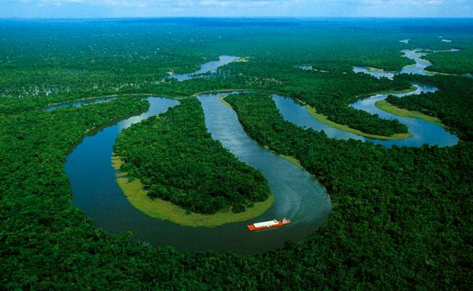 Amazóniai esőerdő.
