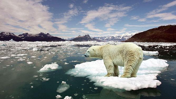 Globális melegedés.