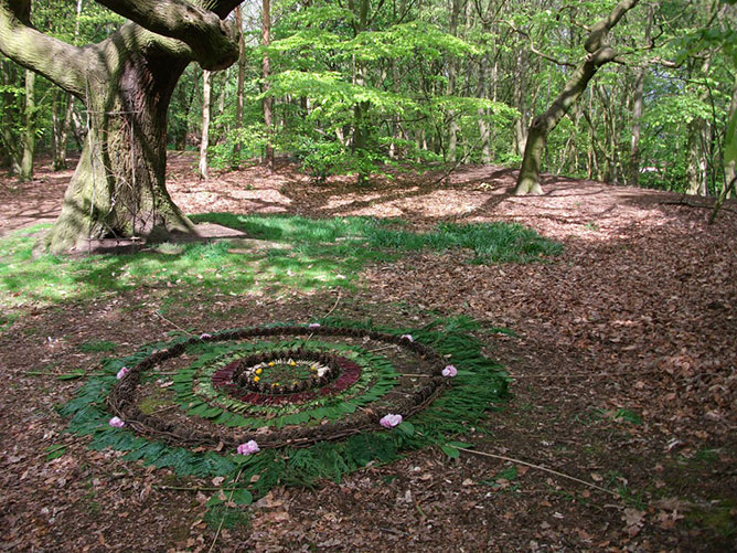 mandala in nature.