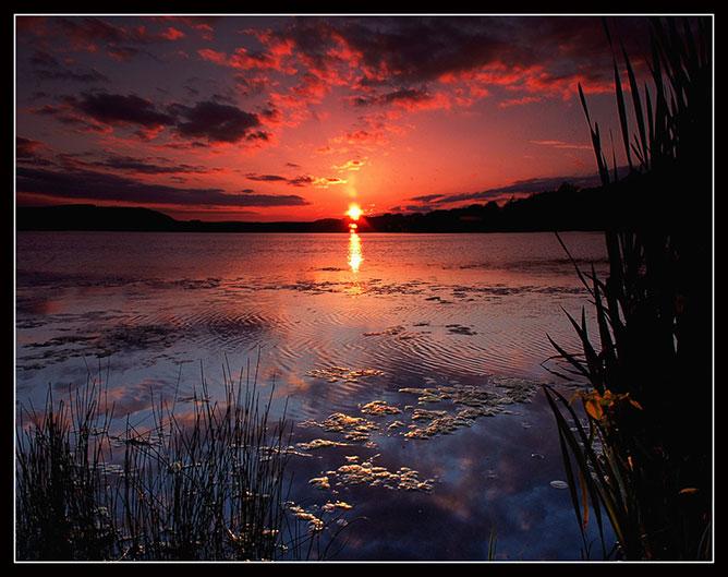 Beautiful sunset in nature.