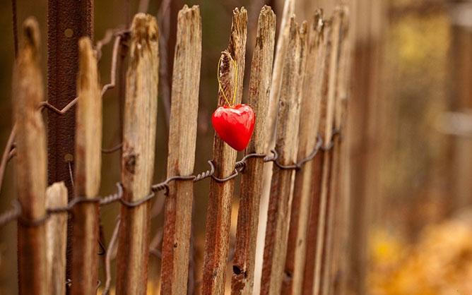 nature love.