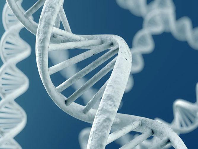 DNS lánc.