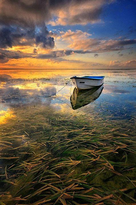 Magányos csónak.