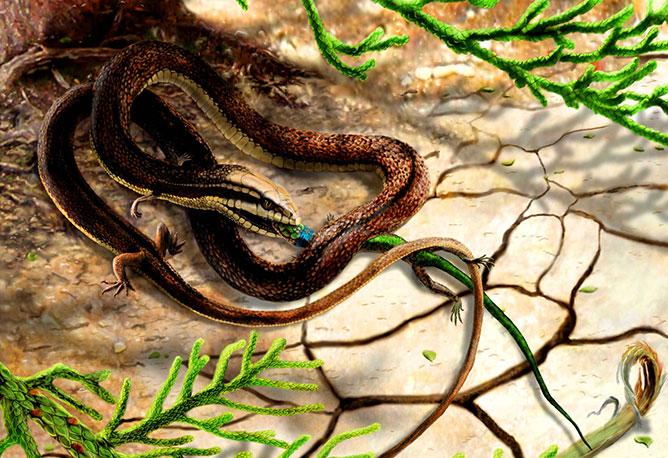 őskígyó