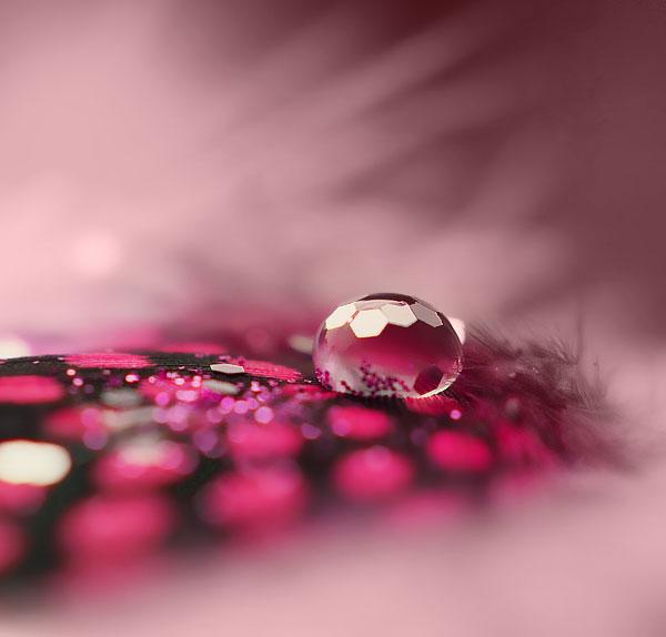 pink love.