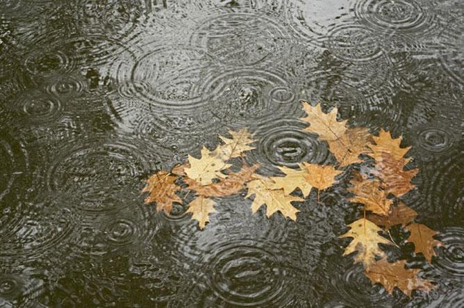 esős ősz.