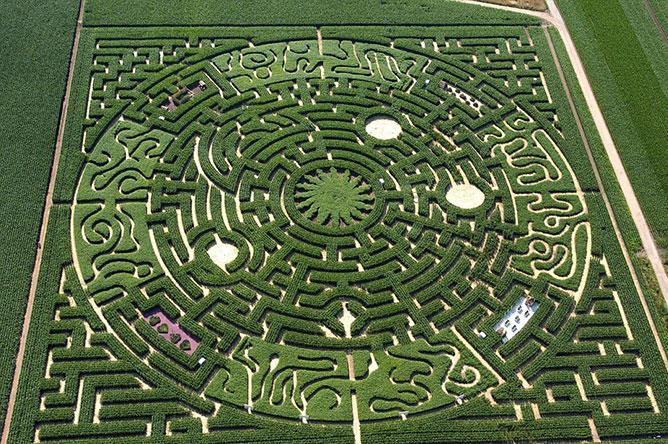 labirintus.